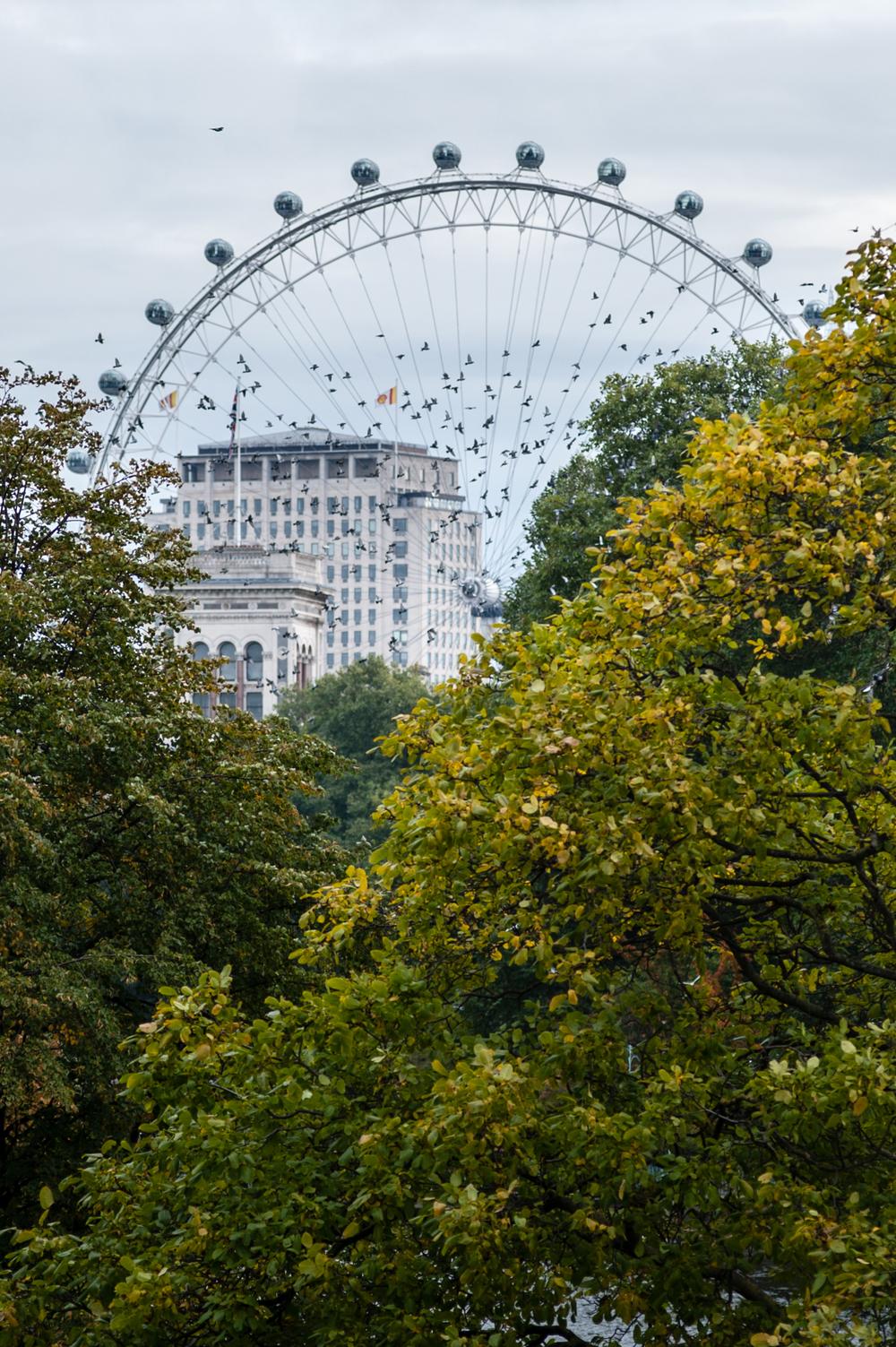 The London Eye - London, United Kingdom.