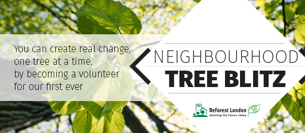 Help plant trees in your neighbours backyards in June!