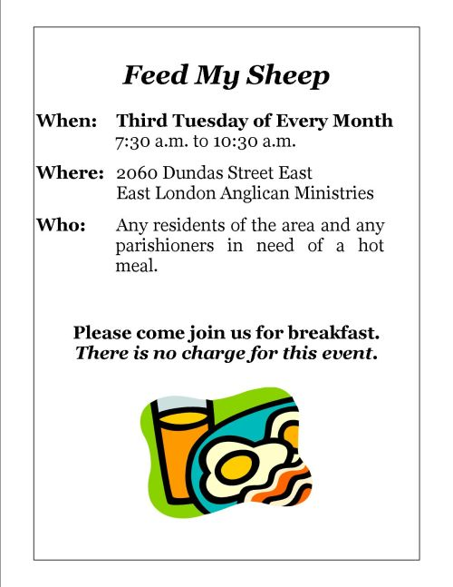 feed-my-sheep-website-version4.jpg