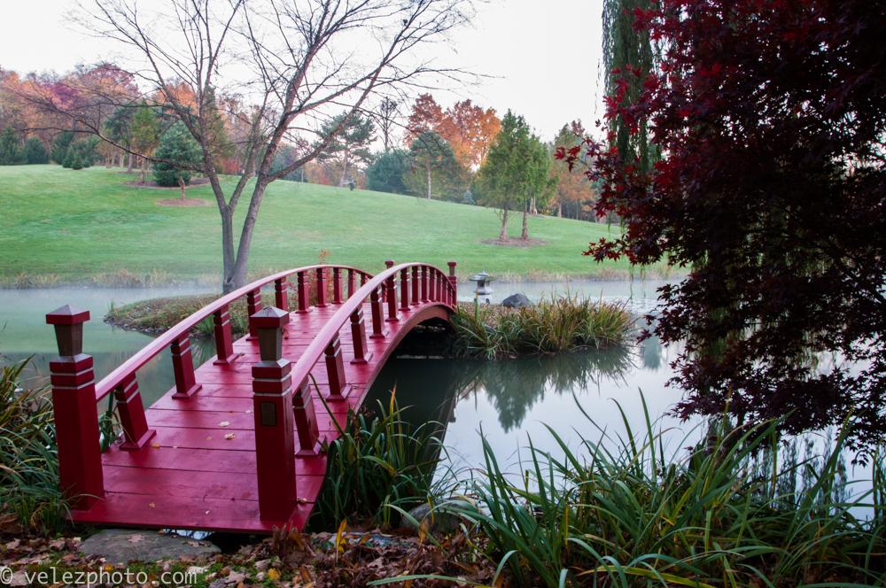 Schnormeier Gardens