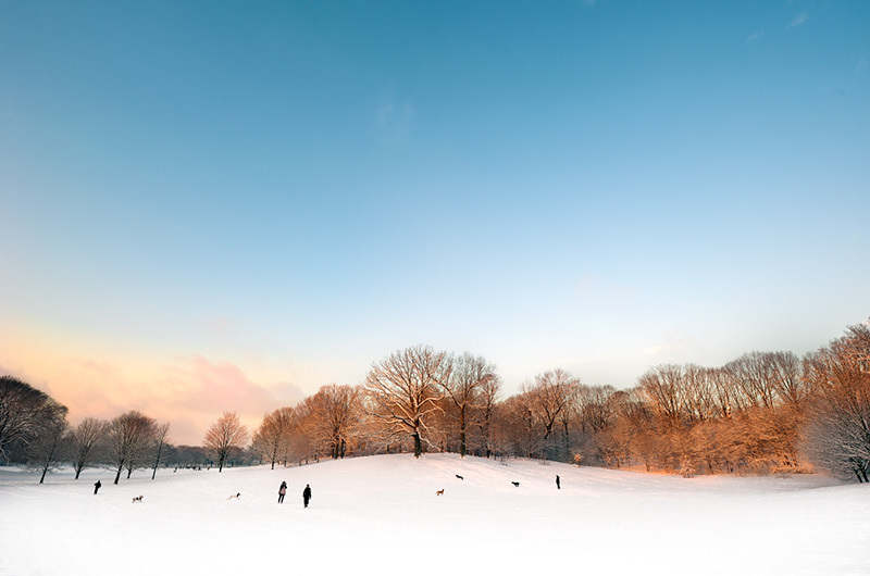 The Sledding Hill (Sunrise)  by Joseph Holmes | Archival Pigment Print