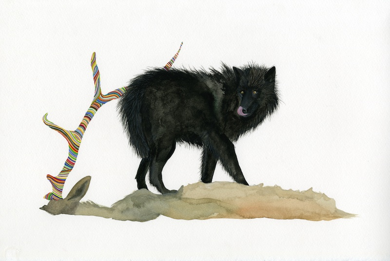 The Wolf  by Carrie Marill | Gouache on Paper