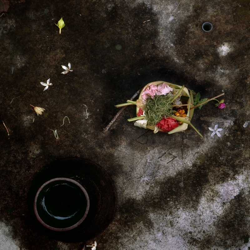 Offering No. 5  by Gregory Krum | Archival Pigment Print