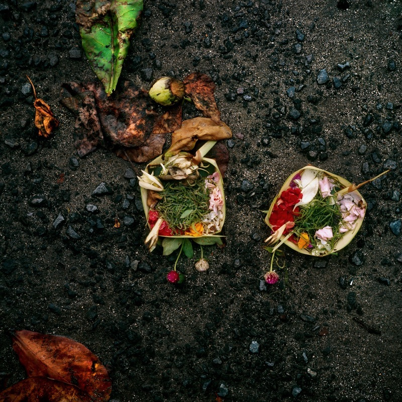 Offering No. 25  by Gregory Krum | Archival Pigment Print