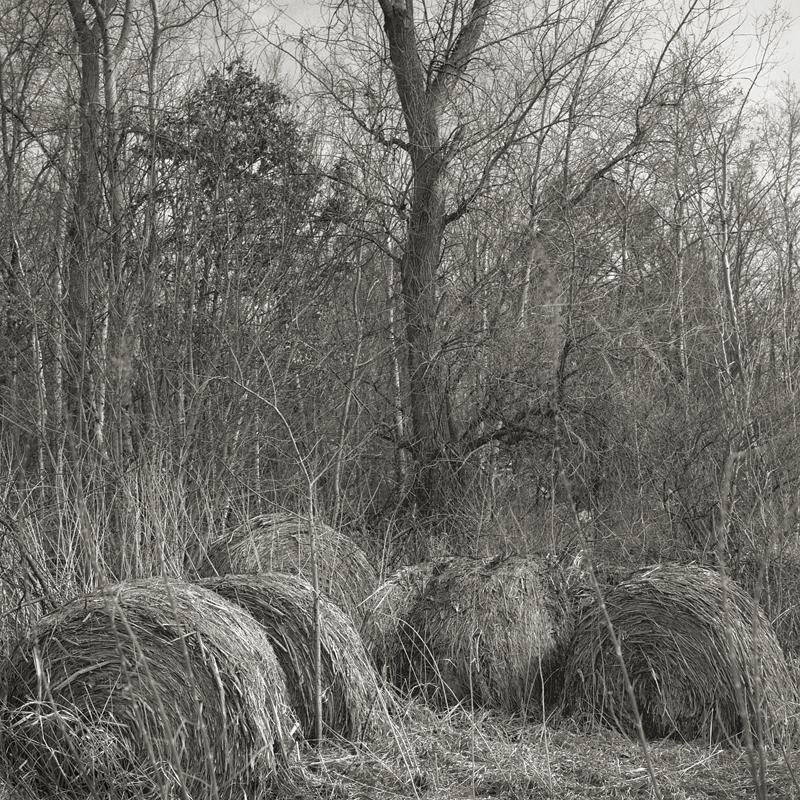 Bales by Beth Dow | Platinum-Palladium Print