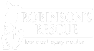 robinsons_rescue2.png