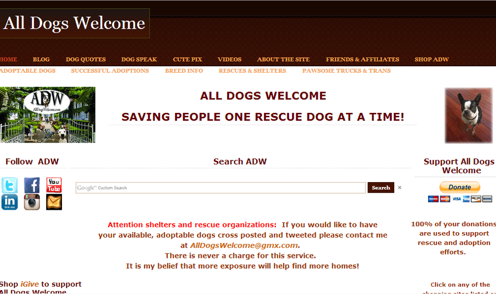 Site - All Dogs Welcome.png