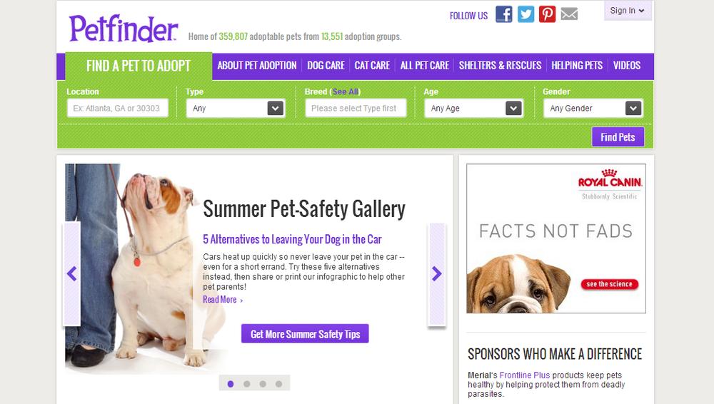 pet finder websites pets world