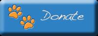 donate_lg_sb.png