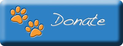 donate_lg.png