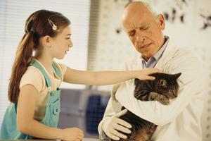 vet, kid & cat.jpg