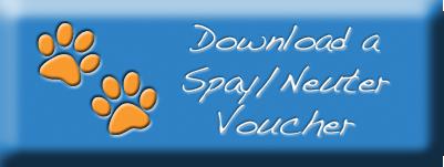 Download Voucher.png