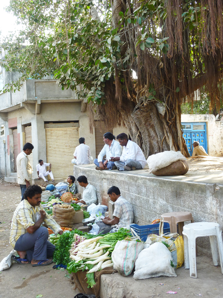 The villages of Gujarat possess many assets such as thriving agriculture and extensive entrepreneurship as well as many challenges like a lack of adequate resources and infrastructure.  Source:  Aseem Inam