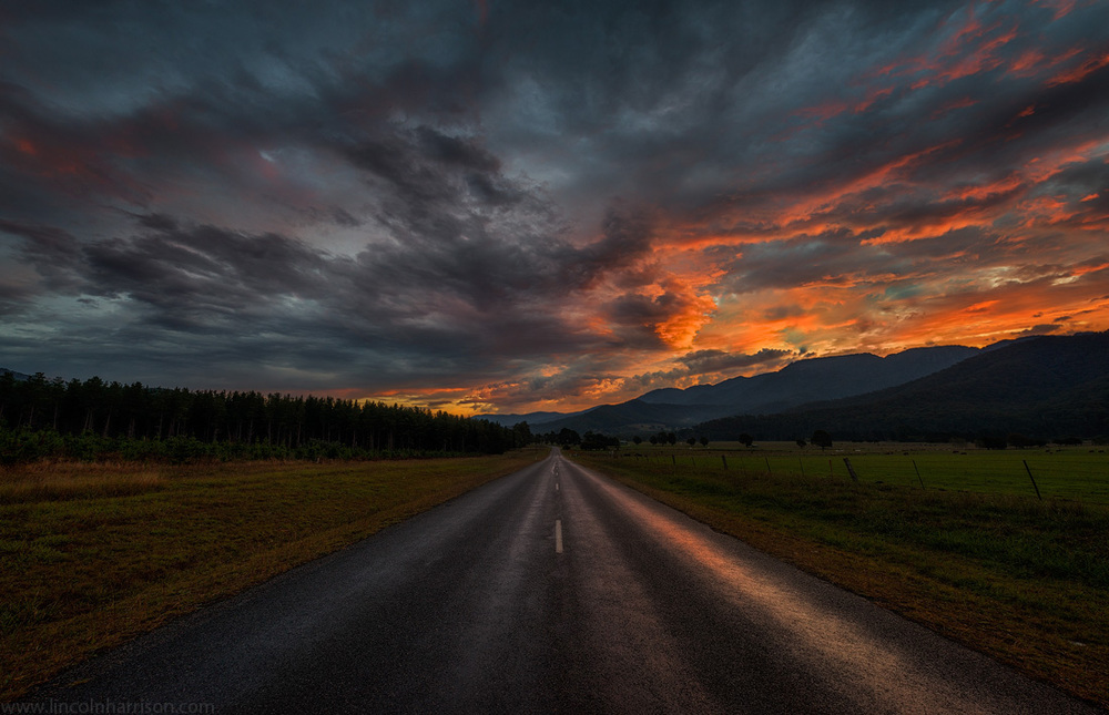 the way home, sunset, buckland valley, mt buffalo, road, alpine national park, lincoln harrison