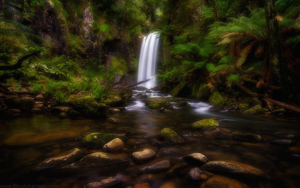landscape, hopetoun falls, waterfall, lincoln harrison, otway ranges, otway waterfalls