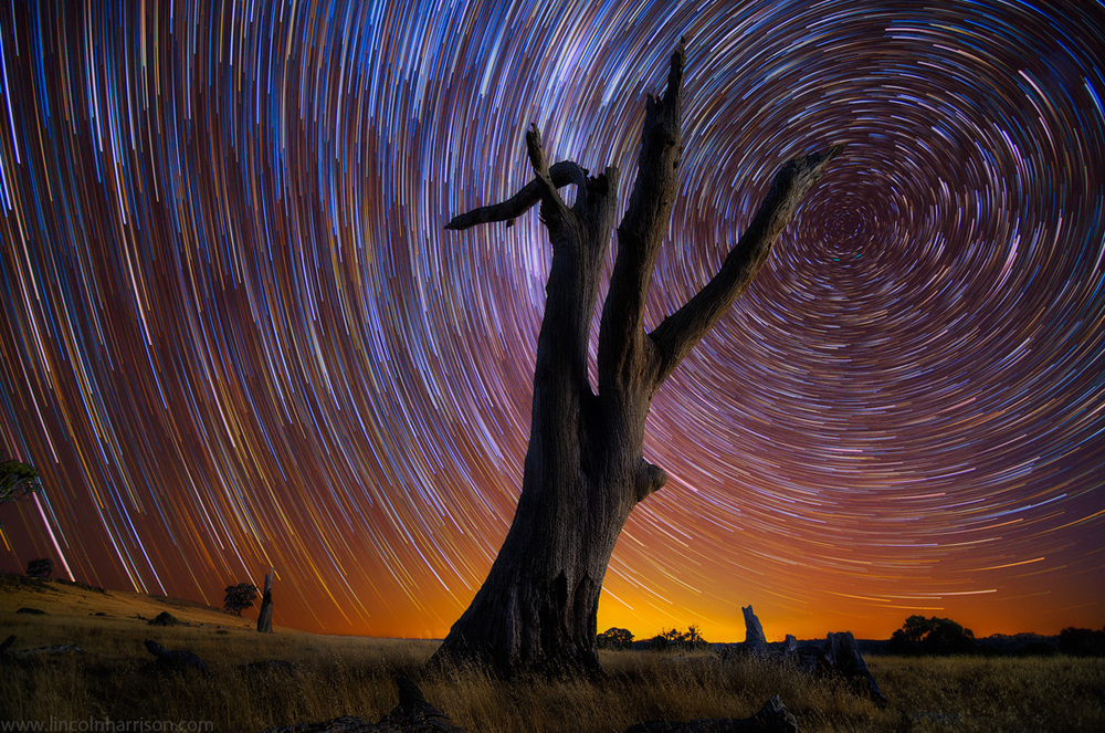 stars, startrails, startrail, circumpolar, long exposure, nigh, night sky, galaxy, nebula, lincoln harrison, astrophotography, astro