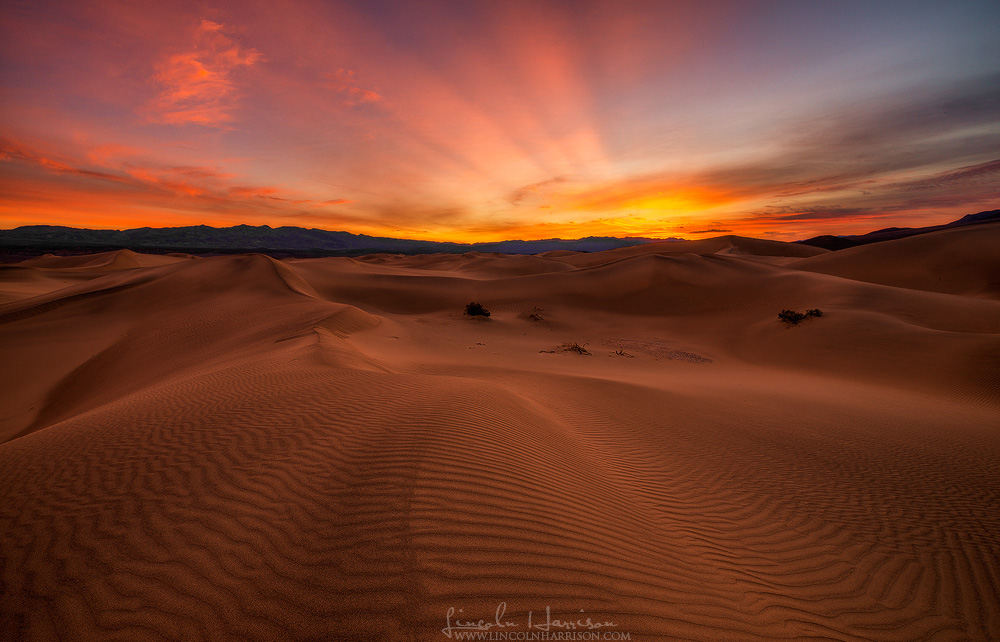 sunrise illuminates the sky above the mesquite dunes