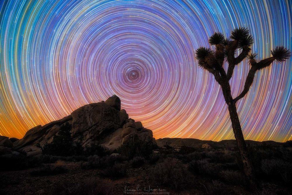 Joshua Tree Startrail