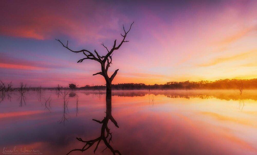 Sunrise over Lake Eppalock