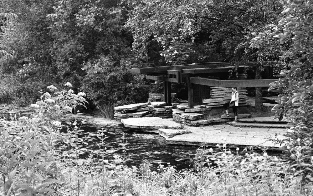 Alfred Caldwell Lily Pool Kodak Tri-X 400