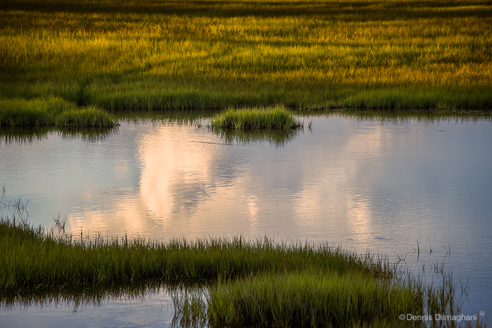 CT_Clinton_Hammonasset-grasses-pond_DSC0766_web_1000x668px.jpg