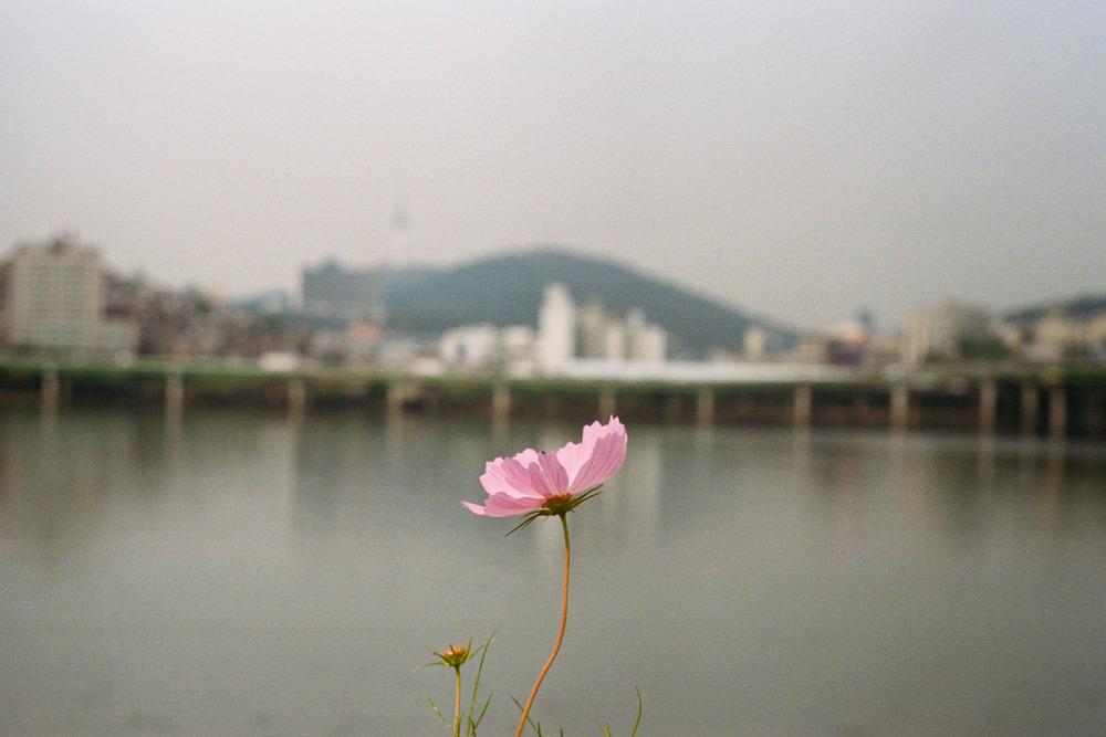 Sheung Yiu_Seoul_03.jpg