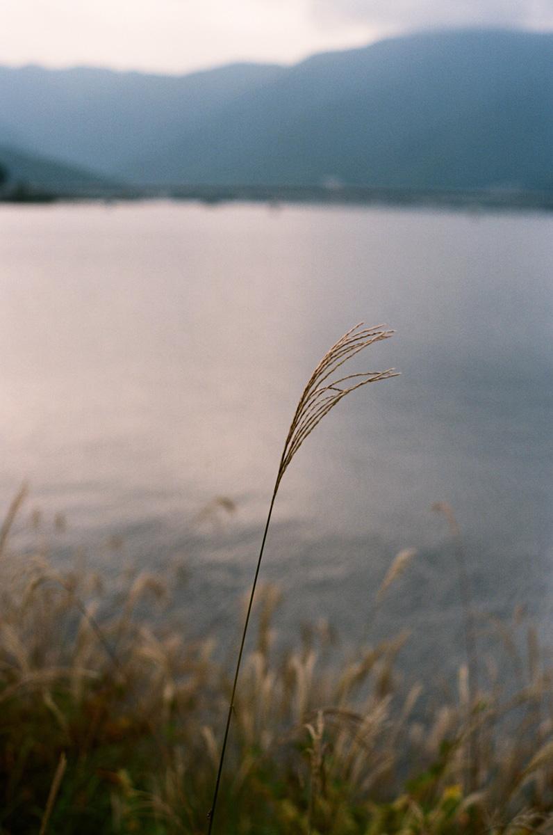 Sheung Yiu_Japan_08.jpg