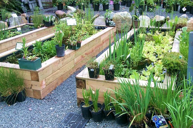 gardening_tw.jpg
