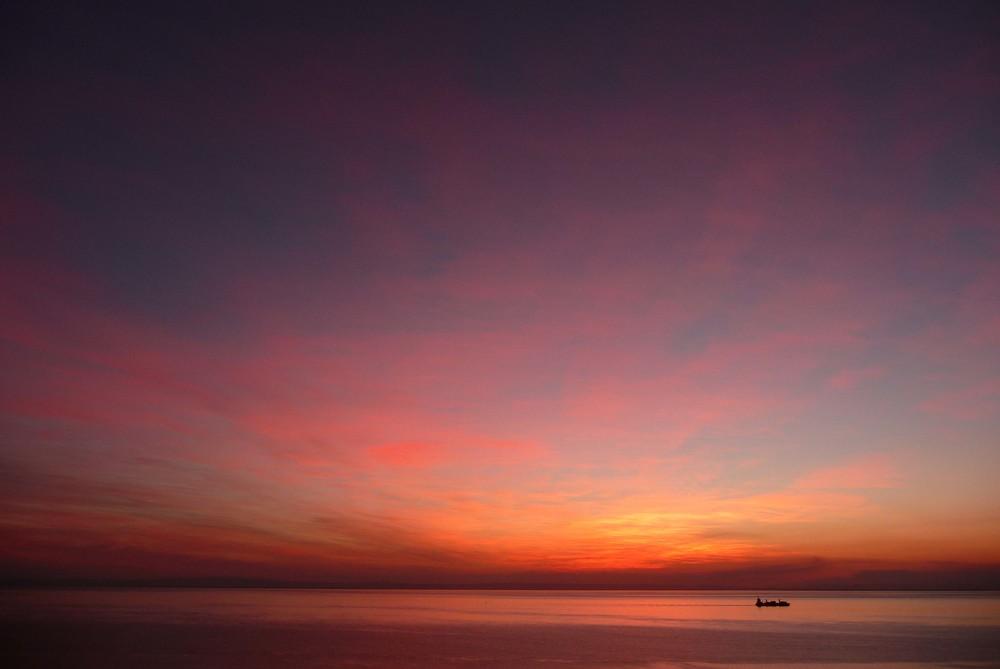 ©David HigginsPhotography-Moton Island.jpg