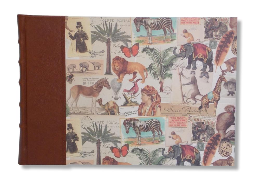Safari Landscape photo album