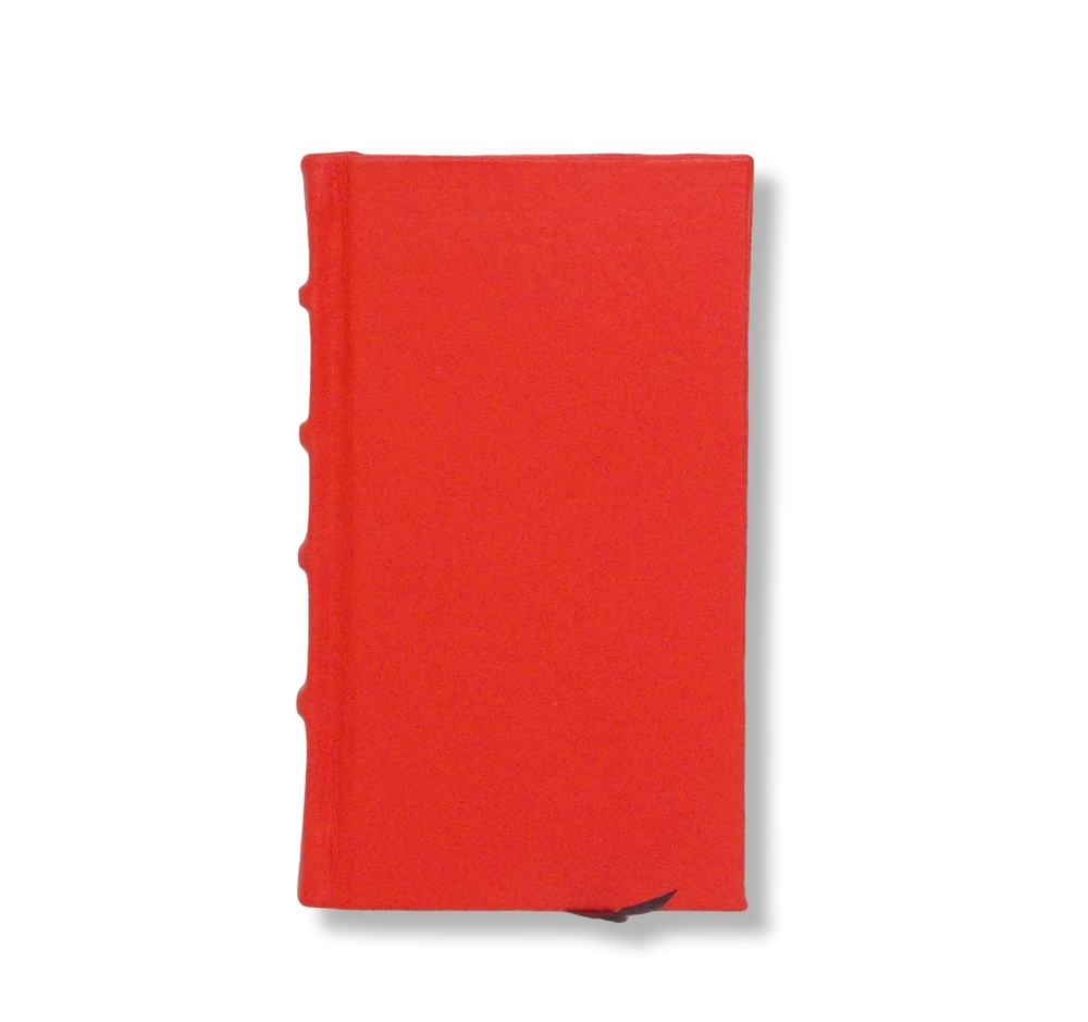 Slimline leather journal in orange
