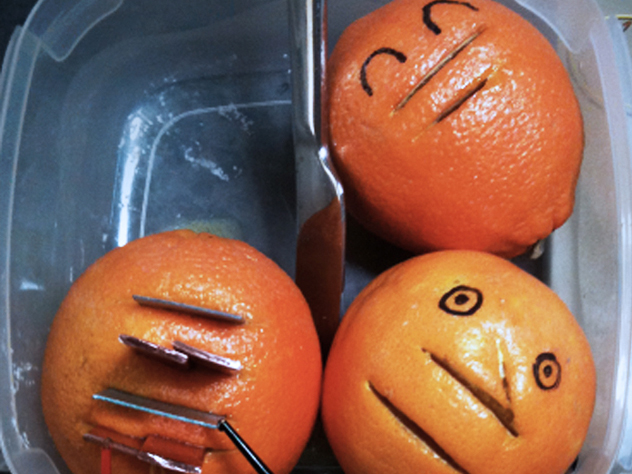 Even the oranges were happy ^ _ ^