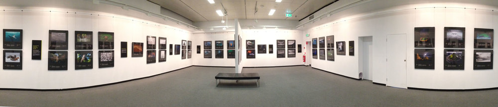 2013 Wildlife Photographer of the Year Exhibition