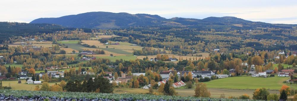 Grenda til skribenten skimtes oppe i høyre hjørne, i forgrunnen Skreia (Foto: Øyvind Holmstad)