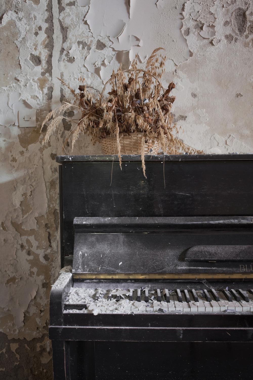 Music for Lost Souls I kjelleren på et svensk forlatt tuberkulose sanatorium står et gammelt piano og støver ned i murpuss og malingsflass.