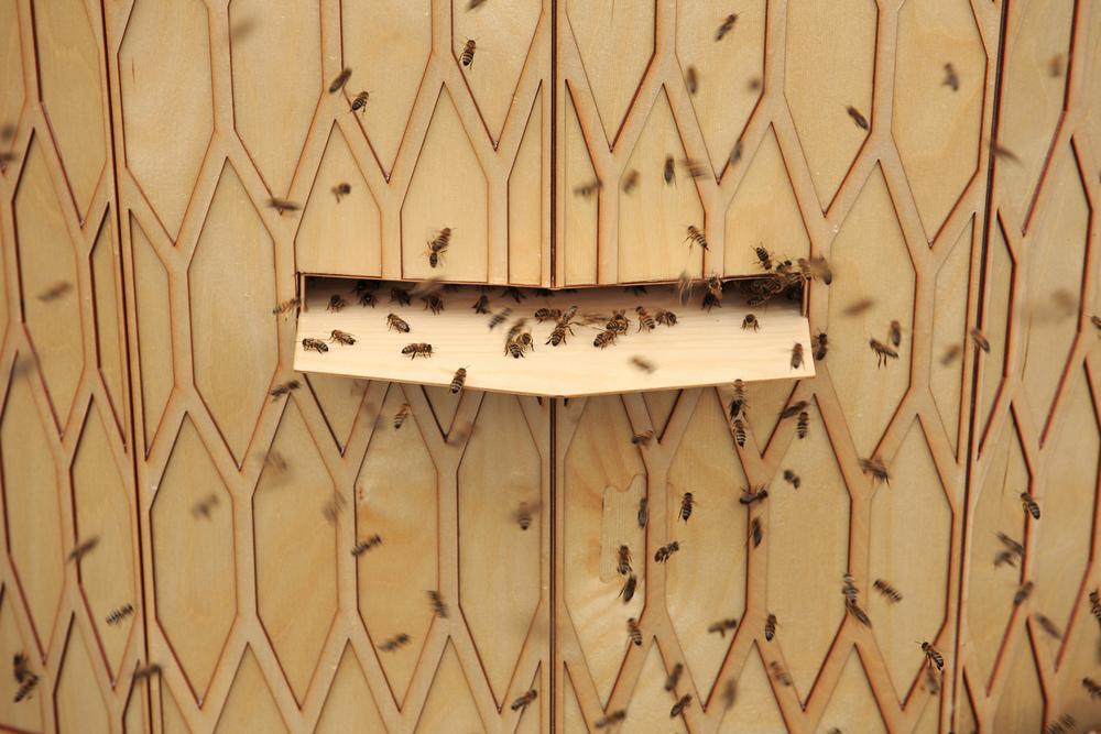 © Morten Brakestad Birøkteren får tilgang til kuben via en dør på siden av strukturen, dette skaper minimalt med forstyrrelse for biene, da deres inngang er på motsatt side av kuben.