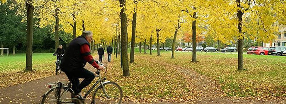 Houten – et suburbant sykkelparadis