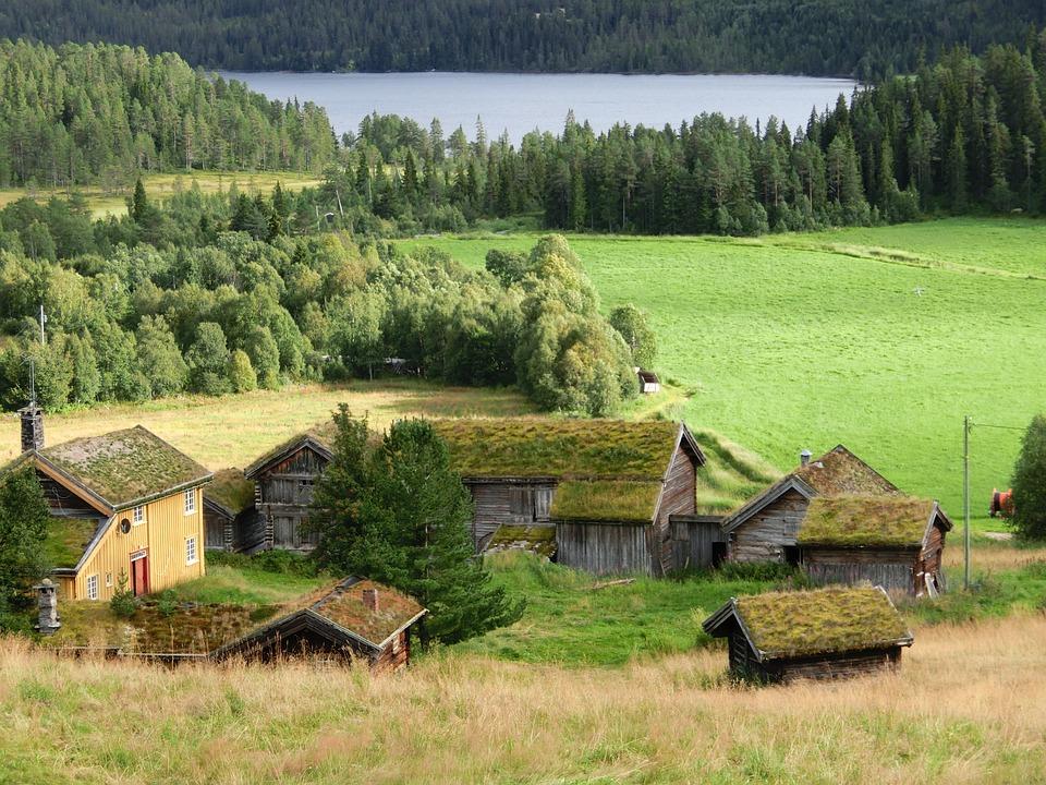 I Norge har vi lange tradisjoner med vegetasjon på taket. Grønne tak har evnen til å holde tilbake og transpirere store mengder vann. Foredragsholder Hanne G. Wells fra Standard Norge mener «den femte fasaden» kommer til å få økt oppmerksomhet i årene som kommer.