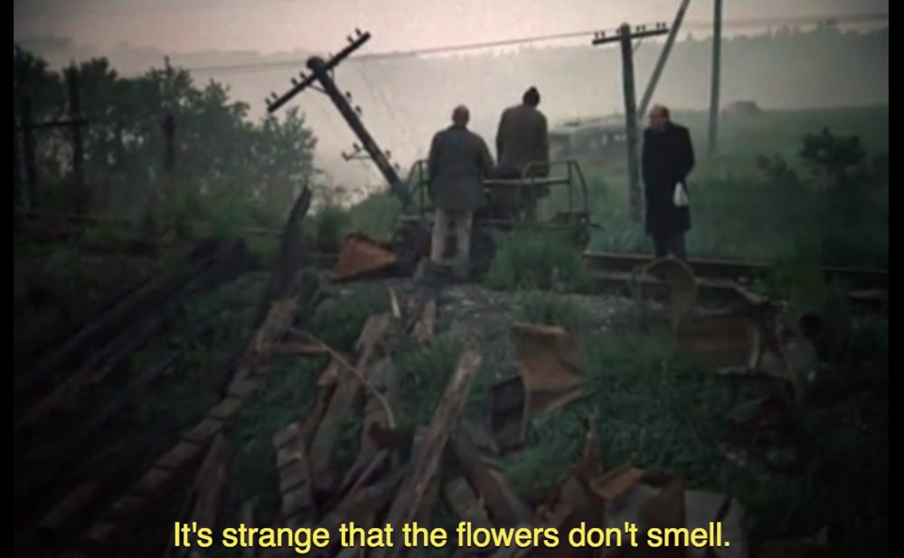 Stalker  (1979), Andrei Tarkovskij