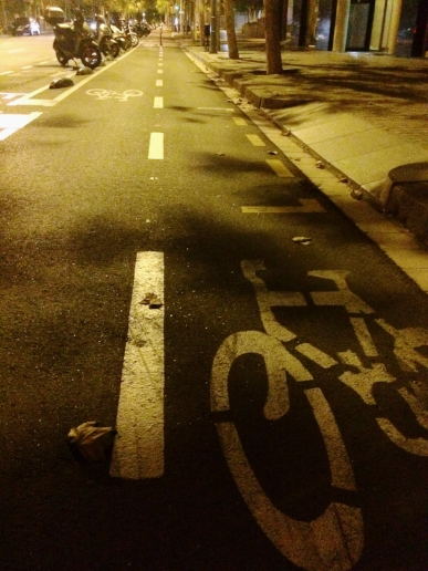 This was the first picture I took. While waiting for a brave Uber man to come and rescue us, I saw this beautiful bike lane.