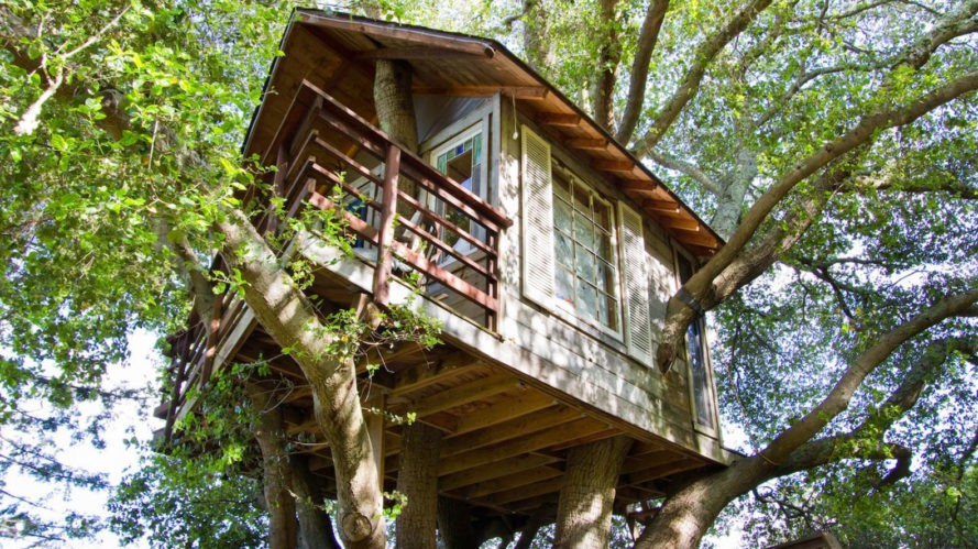 AirBnB treehouse for hire