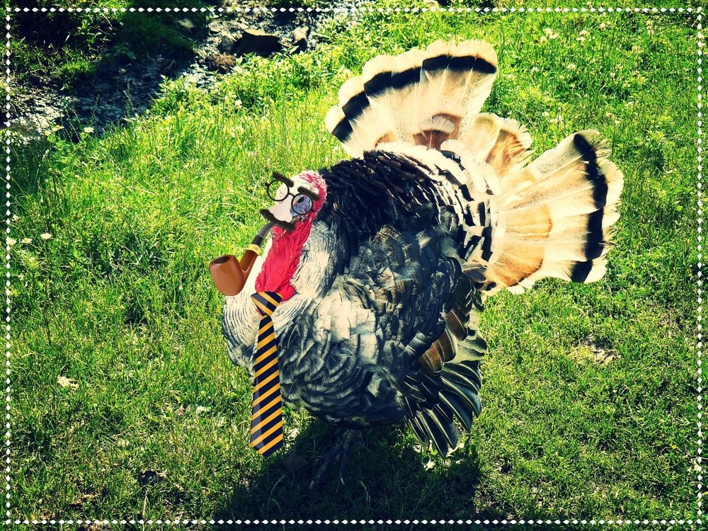 This fellow is hoping no one will recognize him on Thanksgiving...