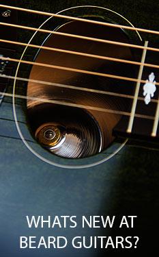 Beard Guitars on stock