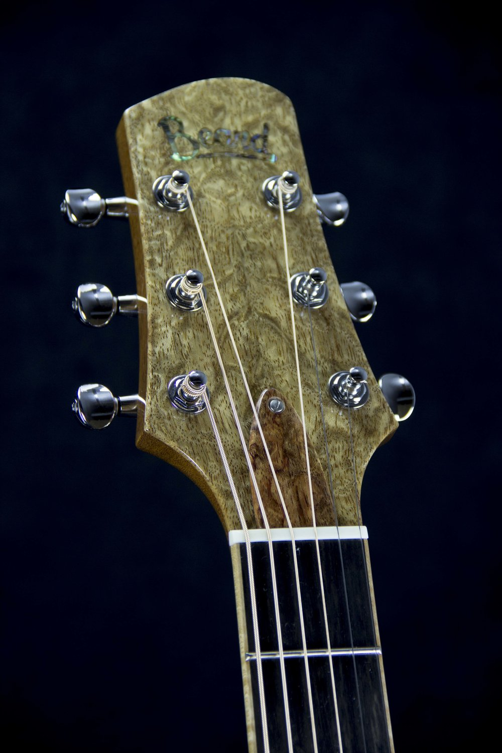 A Model Custom Bubinga HS.jpg