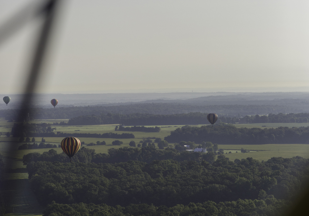 The Other Balloon Pilots Drifting Over the Trees