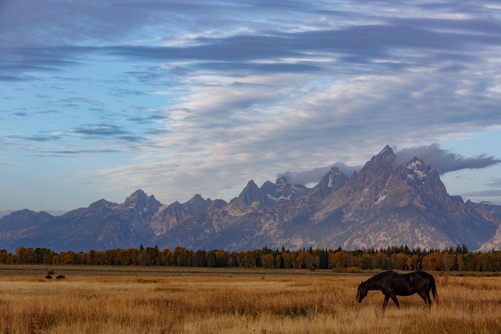 Elk Flats Ranch