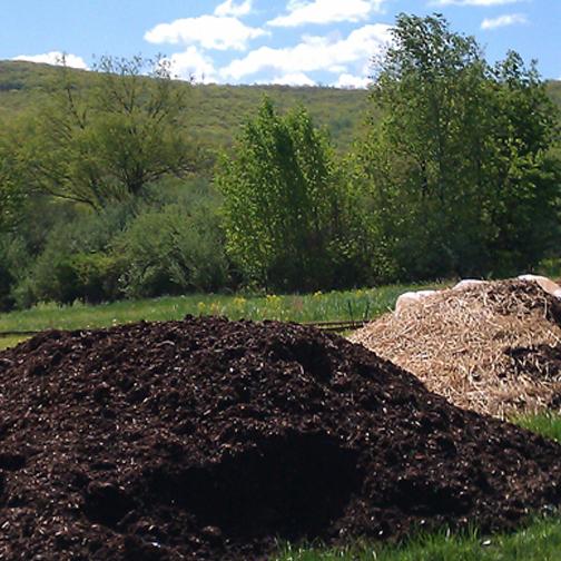 dark soil.jpg