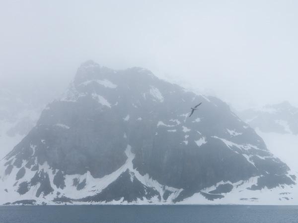 Arctic_2471.jpg
