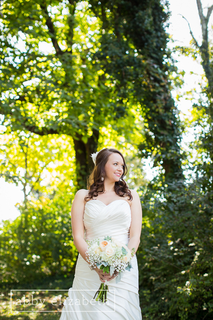 Crescent_Bend_Fall_Wedding_Knoxville_bride_portrait.jpg