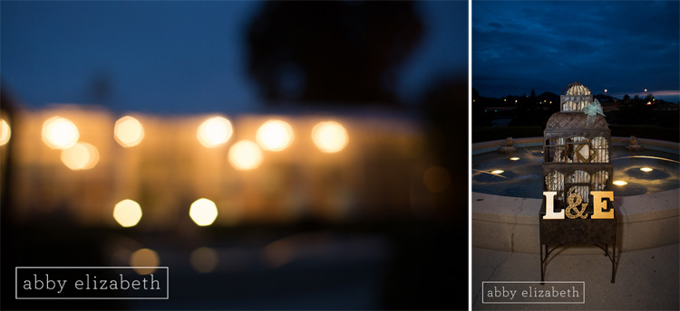Crescent_Bend_Fall_Wedding_Knoxville_lights_night_details_fountain.jpg
